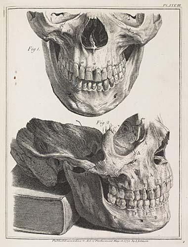 2052098: DENTISTRY HUNTER, JOHN. The Natural History o