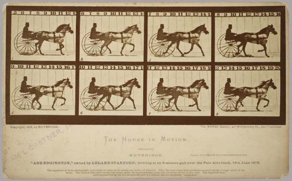 "2080009: MUYBRIDGE, EADWEARD (1830-1904) ""The Horse in"