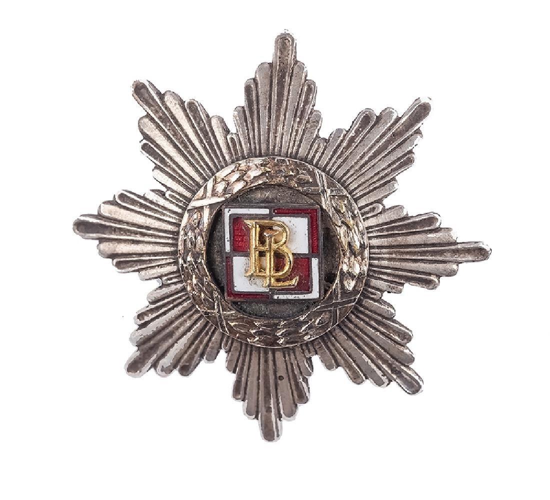 Aviation Battalion Badge - Poznan