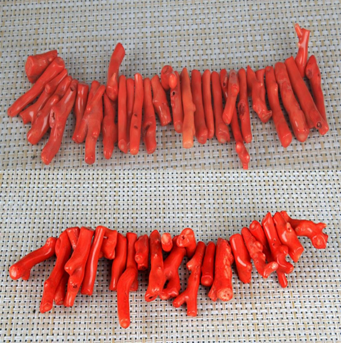 GROUP OF TWO CORAL NECKLACE