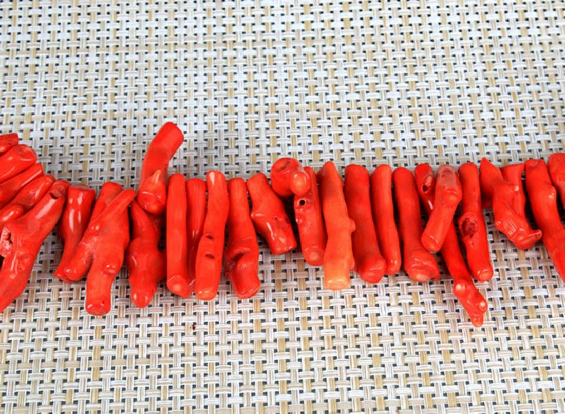 GROUP OF TWO CORAL NECKLACE - 2