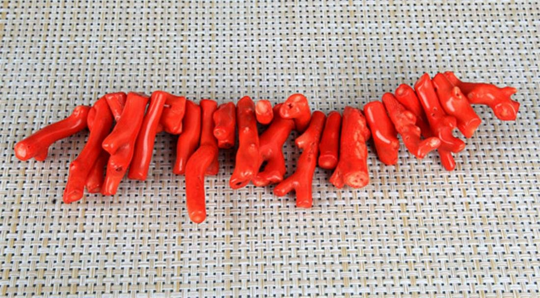 GROUP OF TWO CORAL NECKLACE - 5