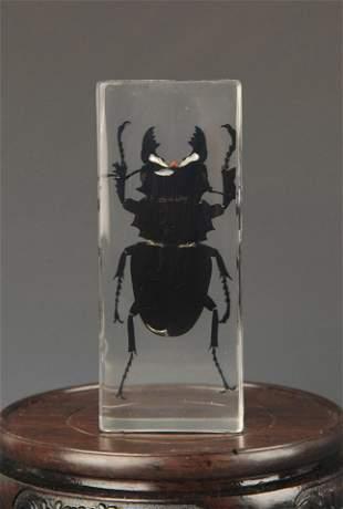 A FINE BLACK BEETLE SPECIMEN IN RESIN