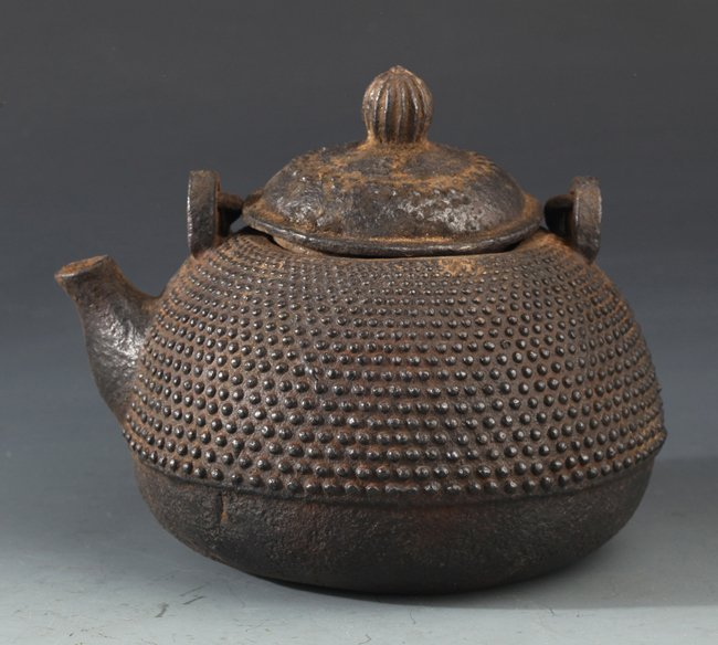 AN UNUSUAL  CARVED IRON TEA POT