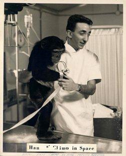 3: NASA Photograph of HAM Chimpanzee