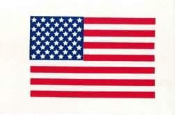 236 Apollo US Flag on Beta Cloth