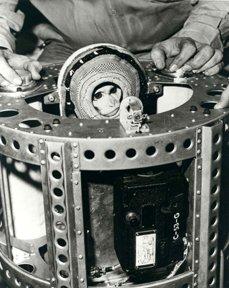 1A: 18 NASA Primate Photographs & Transparen