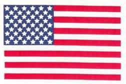 238 Apollo US Flag on Beta Cloth