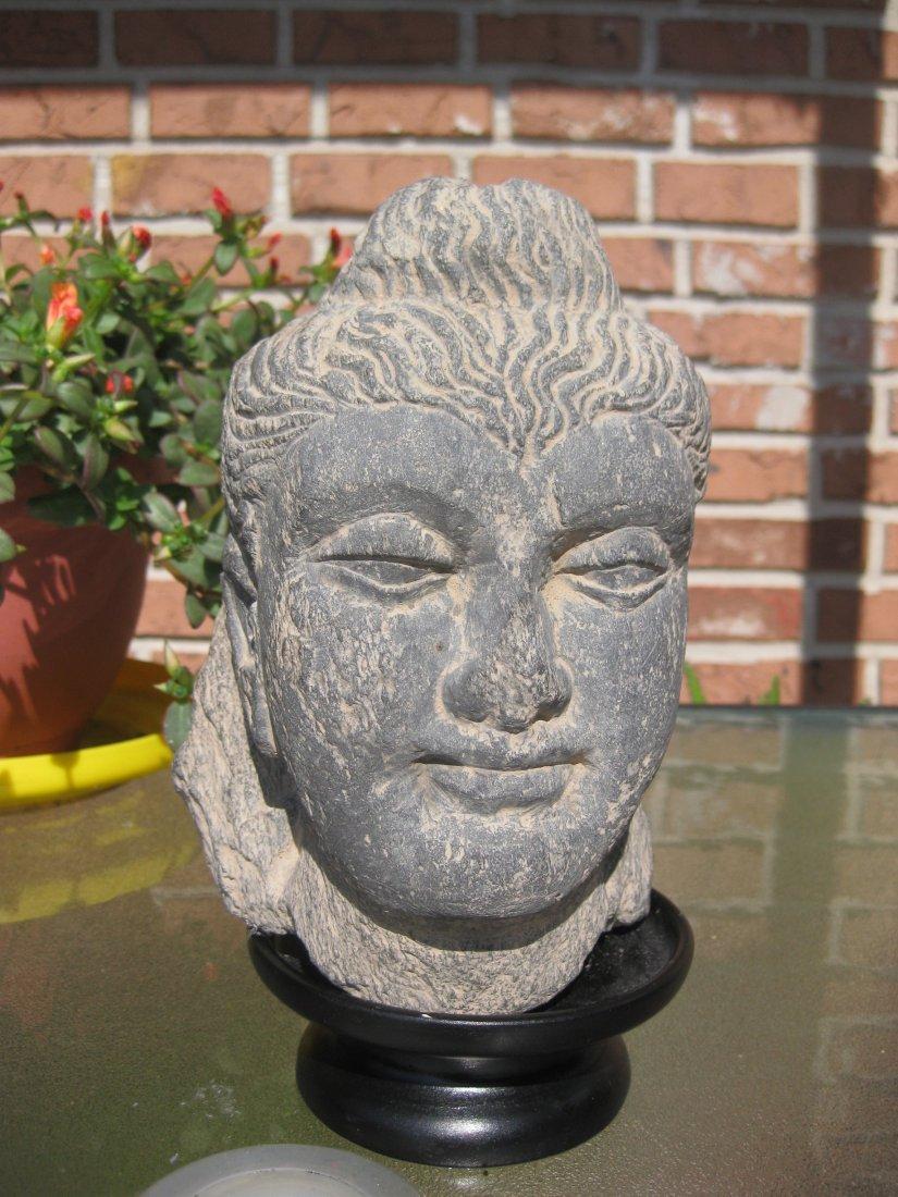 Gandhara Carved Stone 19cm Buddha Head 200-300AD