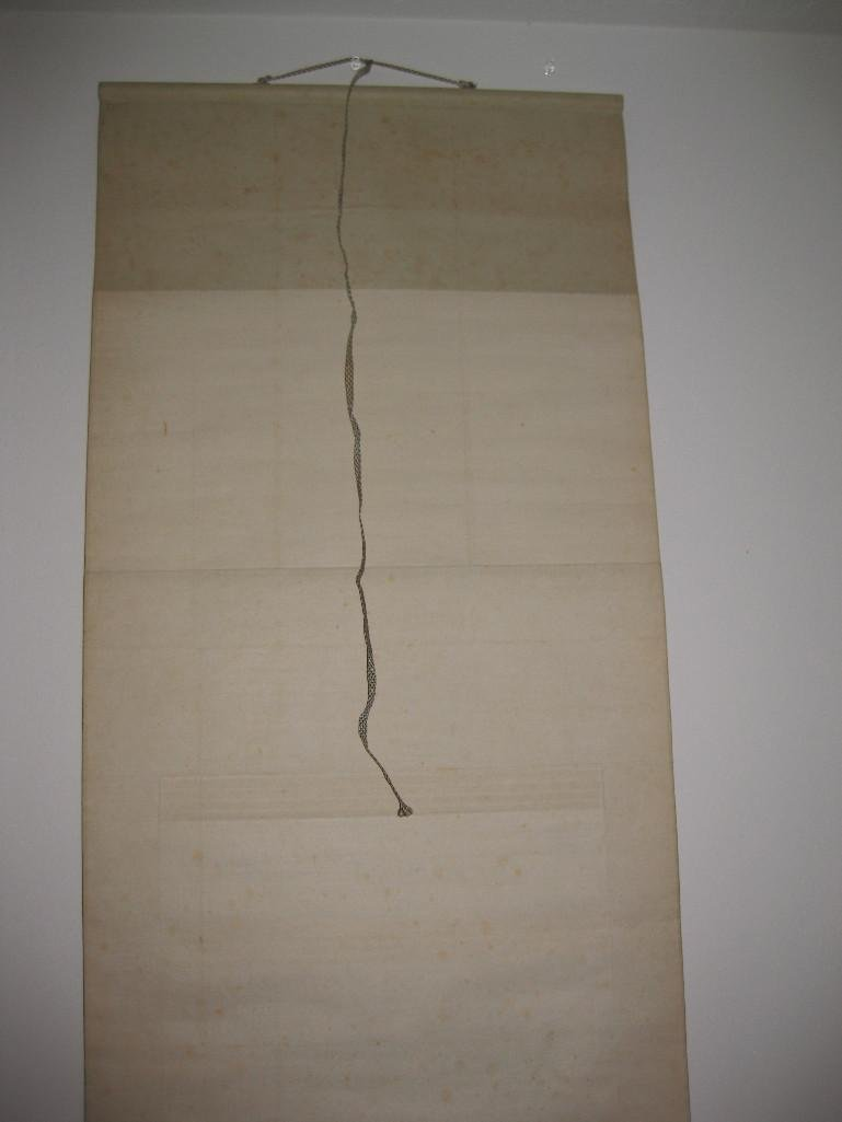 JAPANESE hanging scroll -Fish on plate, by Ueda Togy - 9