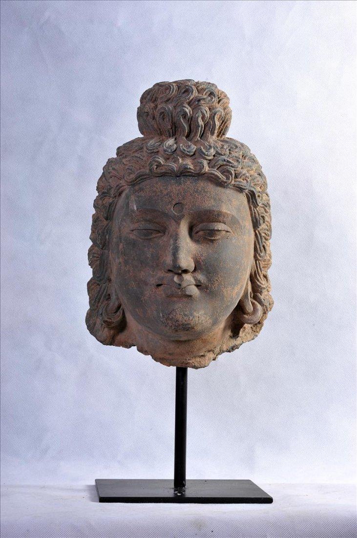 A LARGE GANDHARAN GREY SCHIST YOUNG BUDDHA HEAD