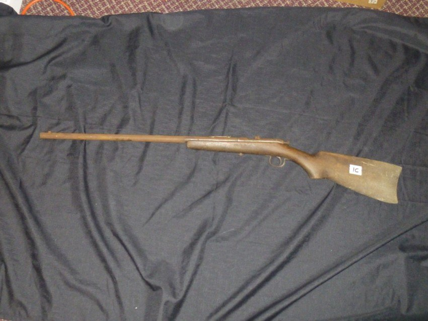 Trail Blazer 22 short and long rifle.