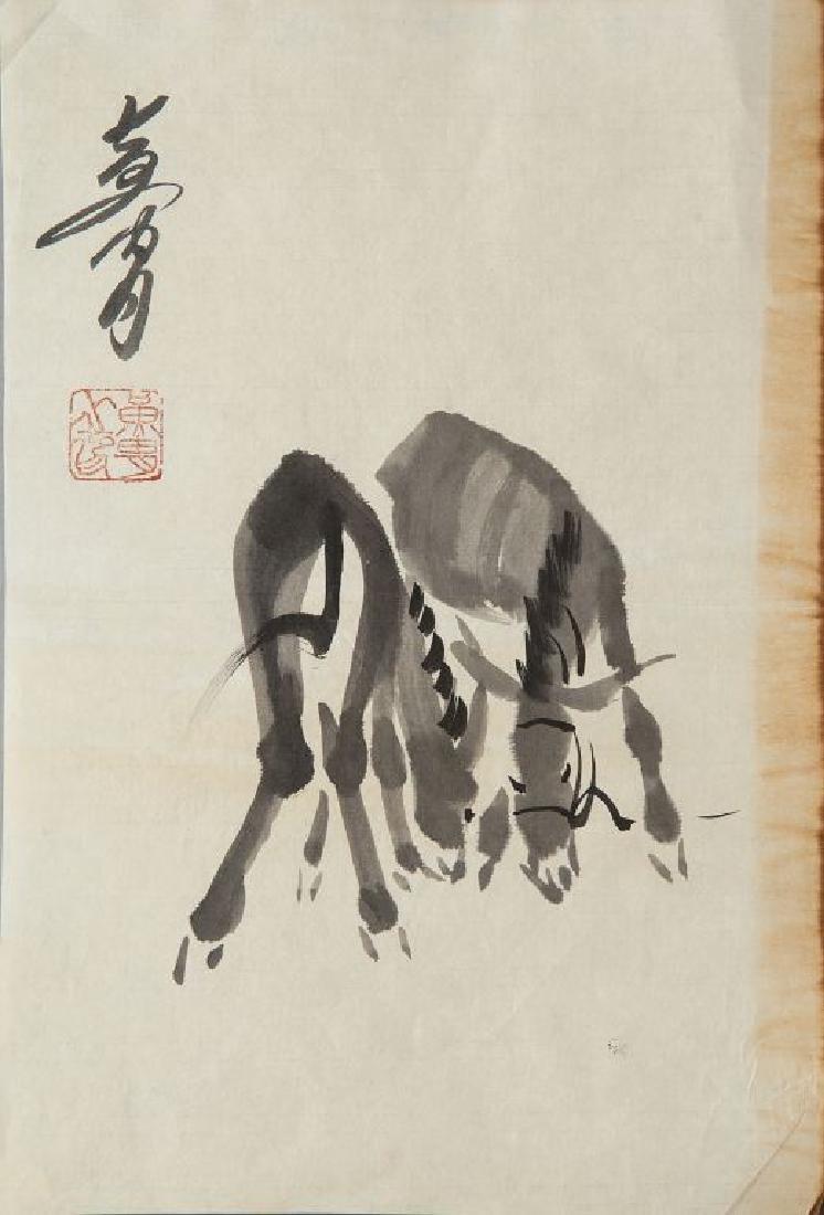 Cinque disegni acquarellati raffiguranti asini