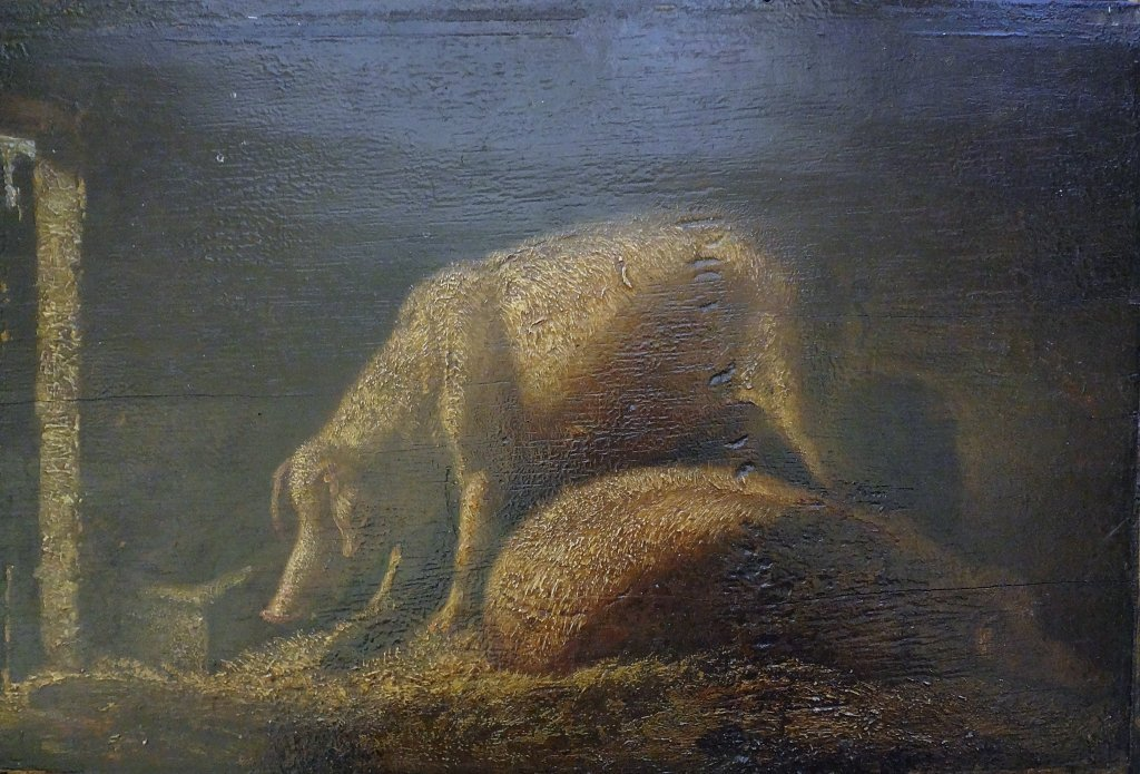"Scuola fiamminga sec.XVIII ""Maiali"" olio cm."