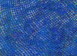 FINLEY FRYER - BLUE MESSHIA