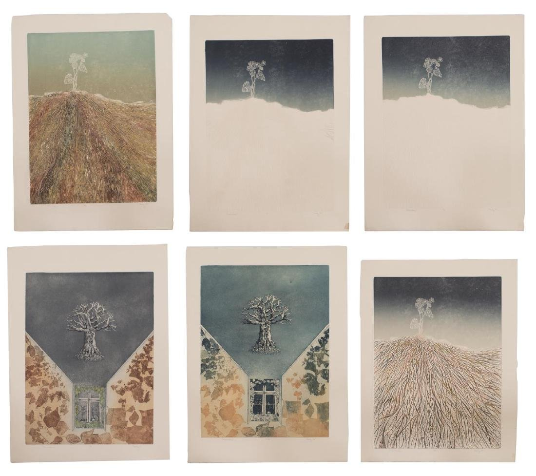 (10) UMFRAMED COLOR ETCHINGS, SIGNED MAIDY 1974 - 3