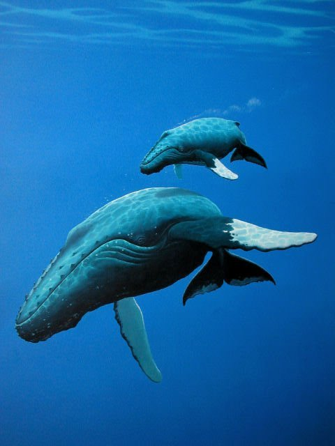 43: ORIGINAL WHALE PAINTING DON McMICHAEL