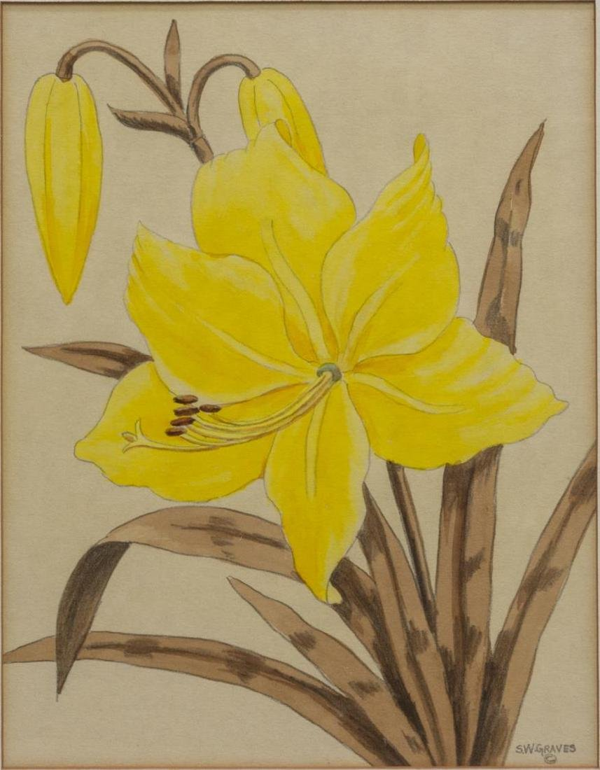 (2) SHIRRELL GRAVES (1894-1954) FLORAL WATERCOLORS - 3