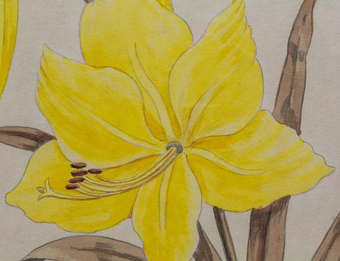 (2) SHIRRELL GRAVES (1894-1954) FLORAL WATERCOLORS - 5
