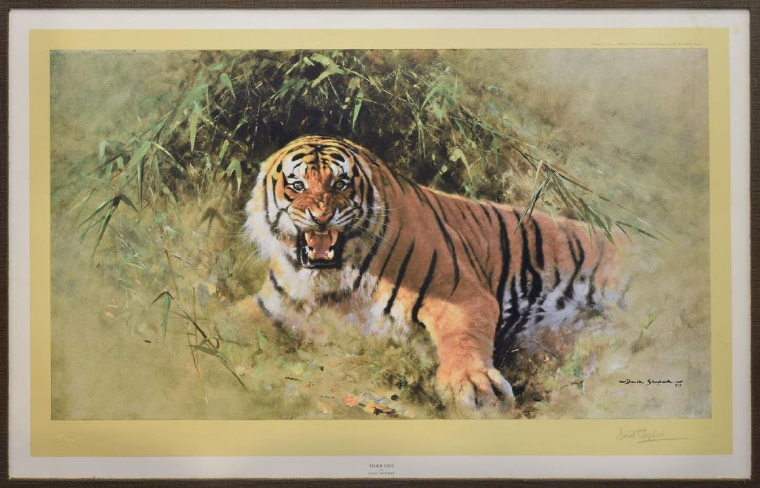 DAVID SHEPHERD (D.2017) SIGNED PRINT 'TIGER FIRE'