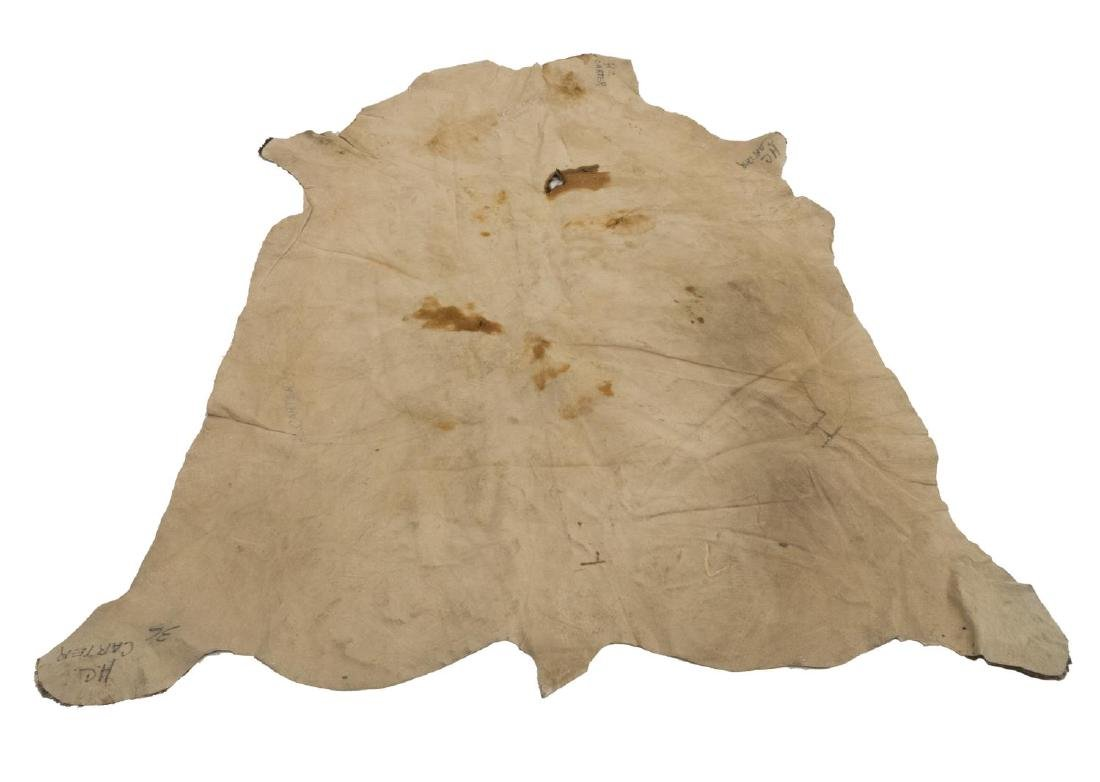 TANNED BROWN AND WHITE SPOTTED COW HIDE - 3