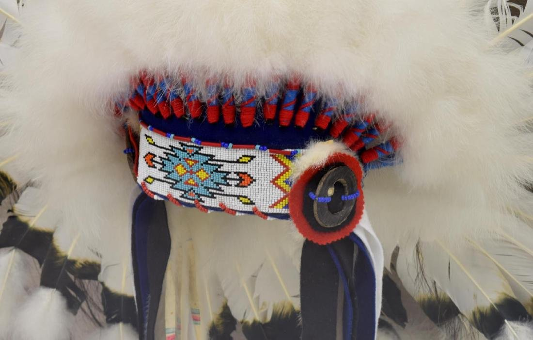 DECORATIVE NATIVE AMERICAN HEADDRESS IN PLEXI CASE - 3