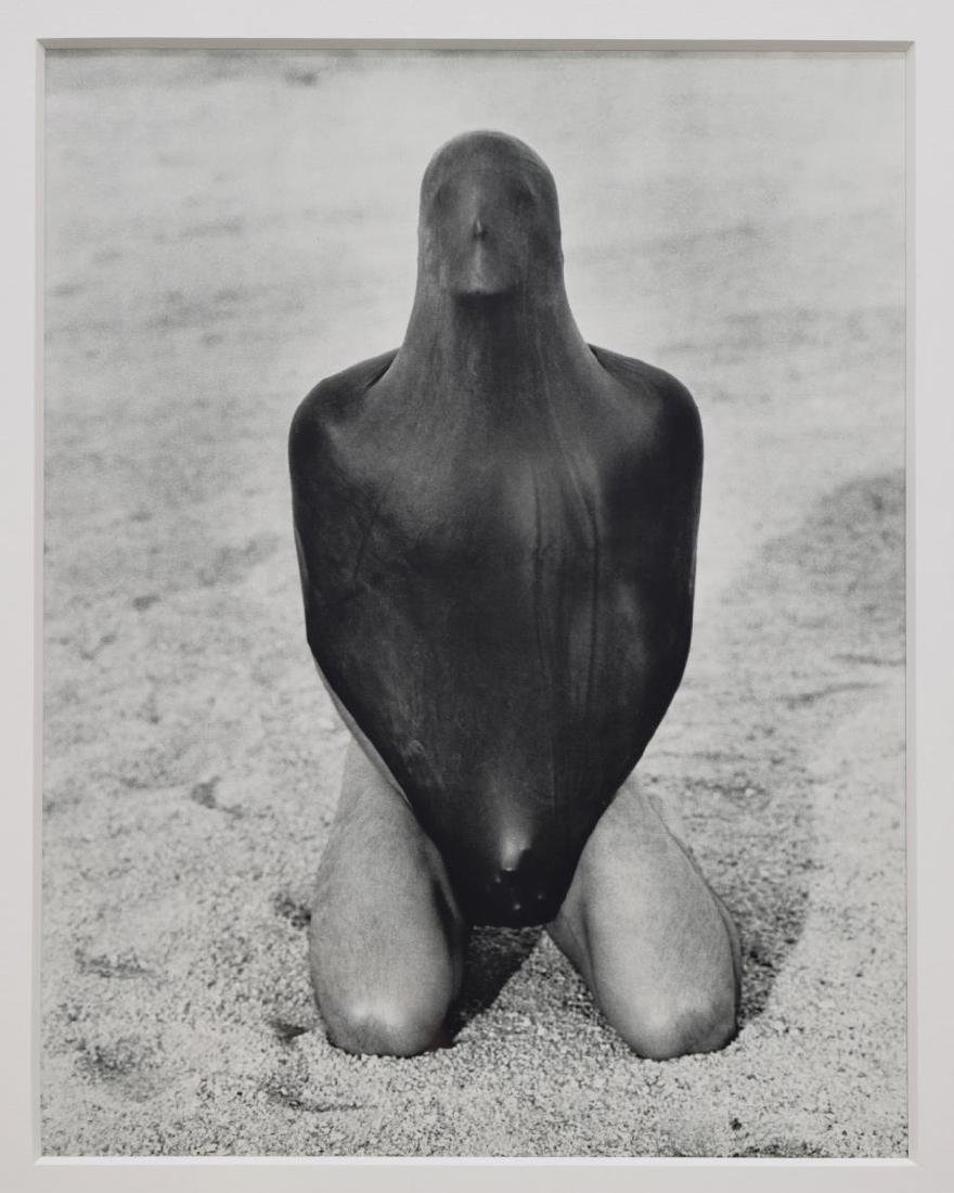 FRAMED PHOTO ART PRINT AFTER HERB RITTS (D.2003)