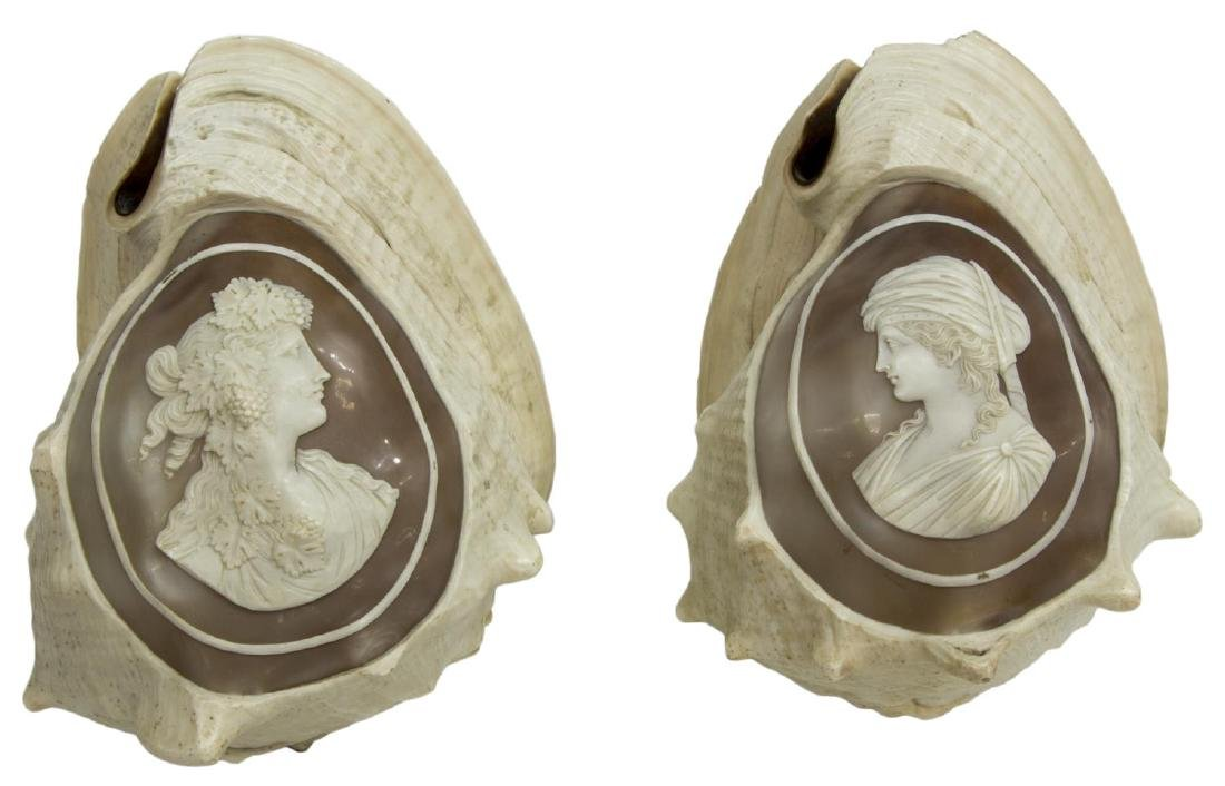 (2) CAMEO CUT CONCH SHELLS, BEAUTIES IN PROFILE