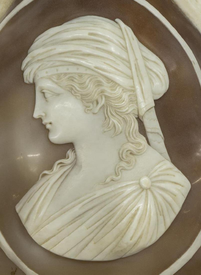 (2) CAMEO CUT CONCH SHELLS, BEAUTIES IN PROFILE - 3