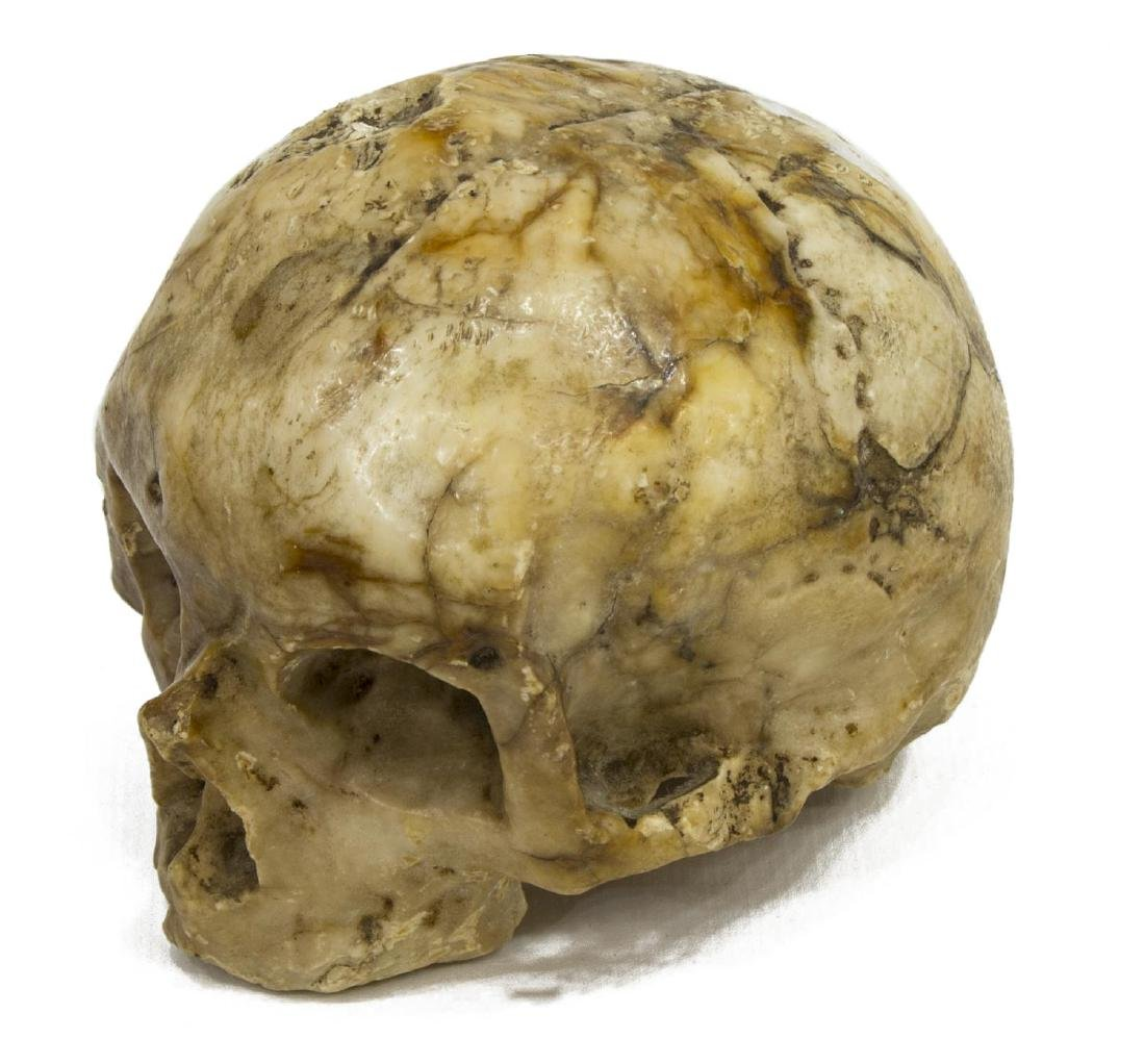 CARVED MARBLE SKULL MEMENTO MORI, 16TH C.