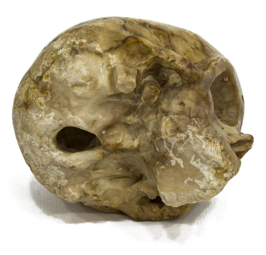 CARVED MARBLE SKULL MEMENTO MORI, 16TH C. - 4