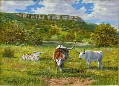 MANUEL GARZA B1940 LONGHORNS  WILDFLOWERS