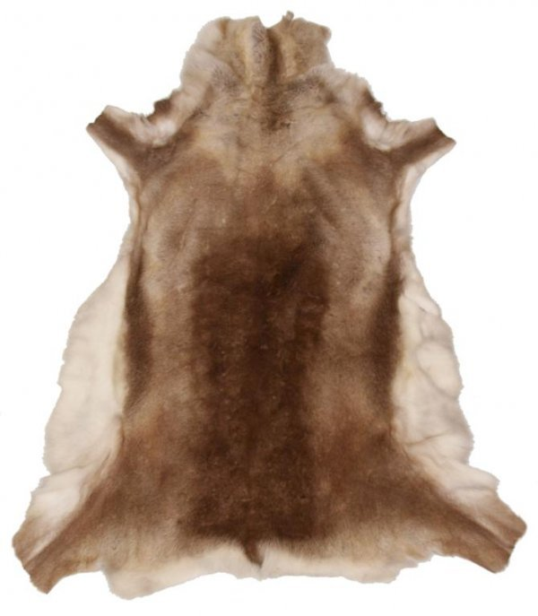 DEER HIDE RUG OR WALL HANGING
