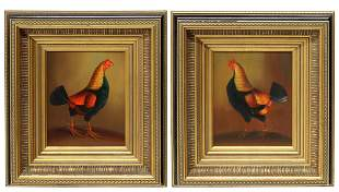 (2) DECORATIVE FRAMED OIL PAINTINGS, ROOSTERS