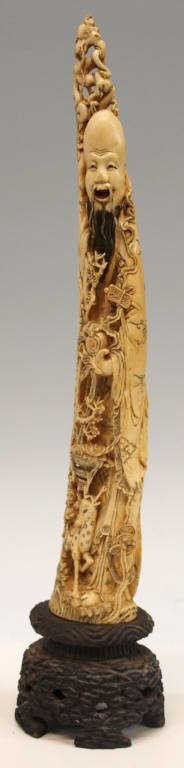 227: LARGE CHINESE CARVED & TINTED IVORY TUSK, SHOULAO