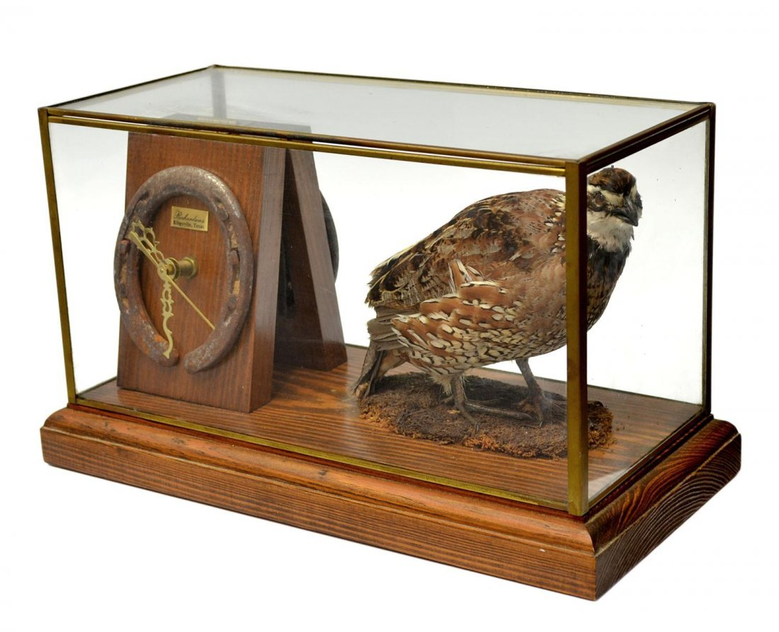 3: AVIAN TAXIDERMY DIORAMA & CLOCK, KING RANCH, TX