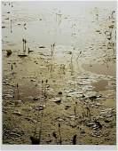 DAVID GIBSON (B. 1939) B&W PHOTOGRAPH WATERLILIES