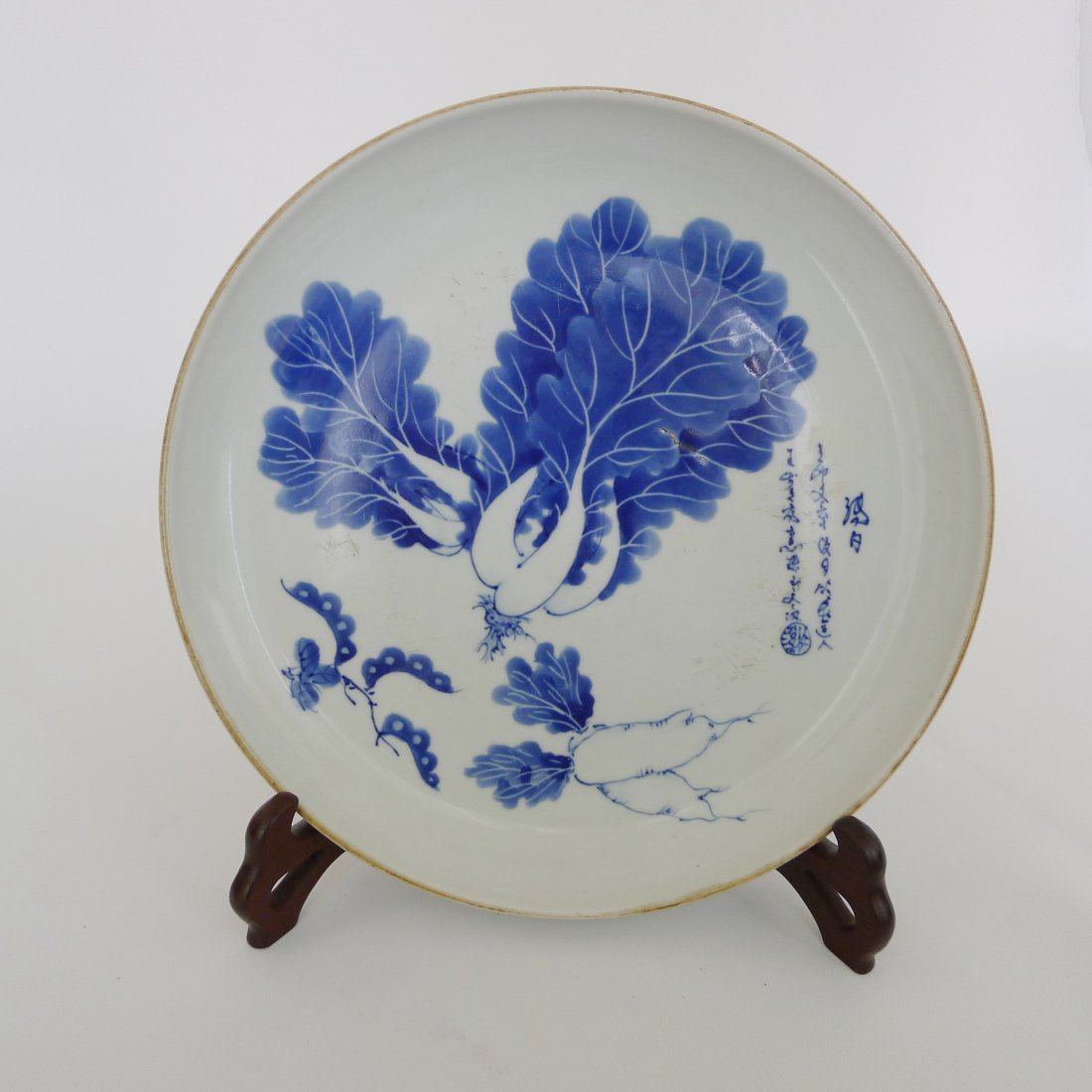THE BLUE AND WHITE CABBAGE RADISH PLATE