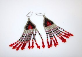 Vintage Native American Plain Indians Earrings