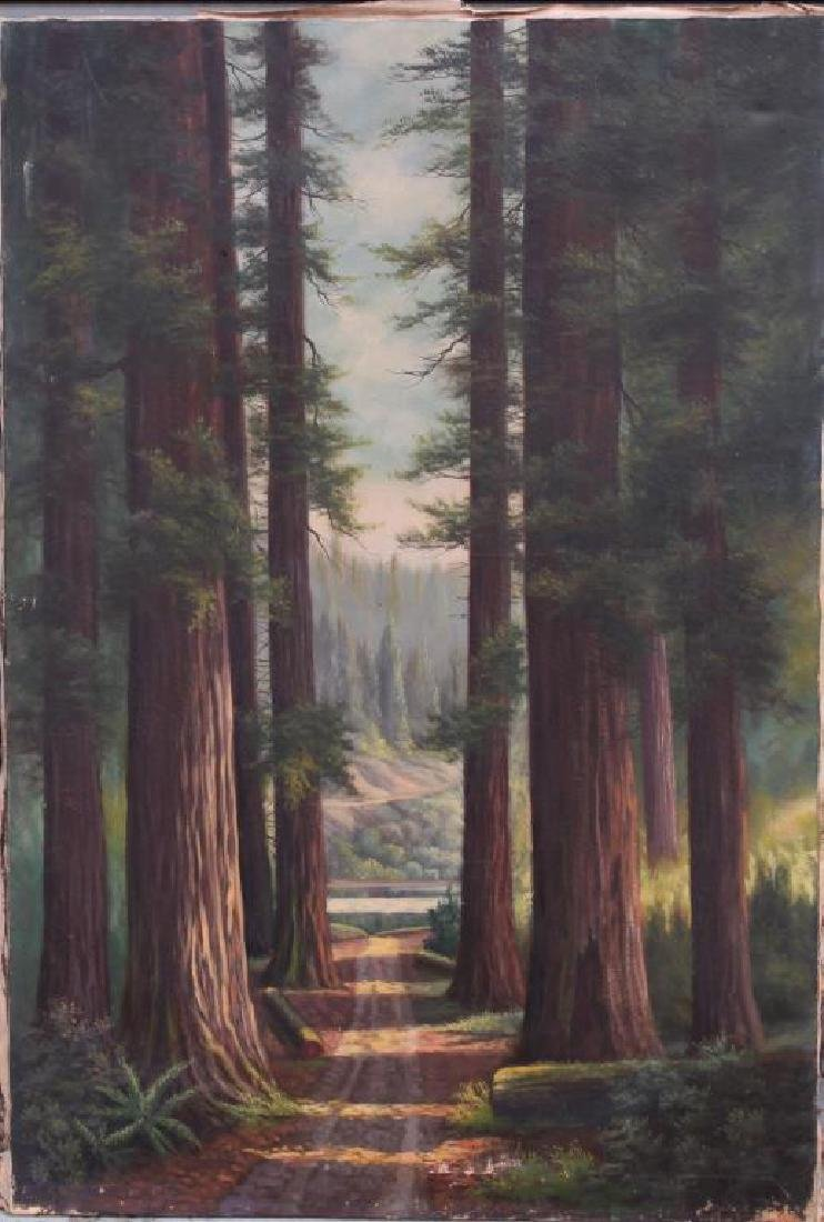 OIL PAINTING ON CANVAS OF A FOREST SCENE
