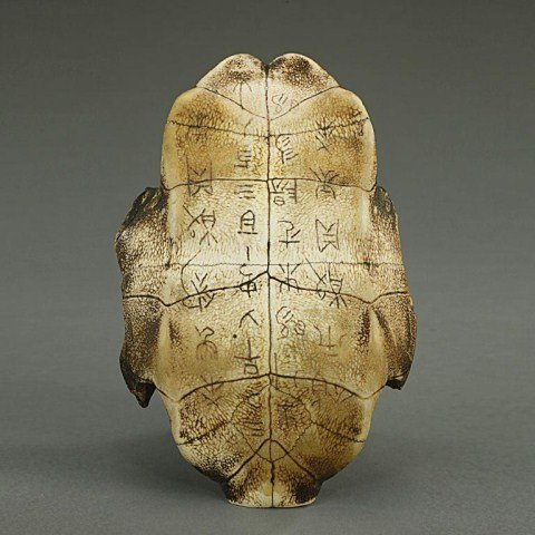 CHINESE TURTLE-STYLE ORACLE SHELL WITH INSCRIPTION