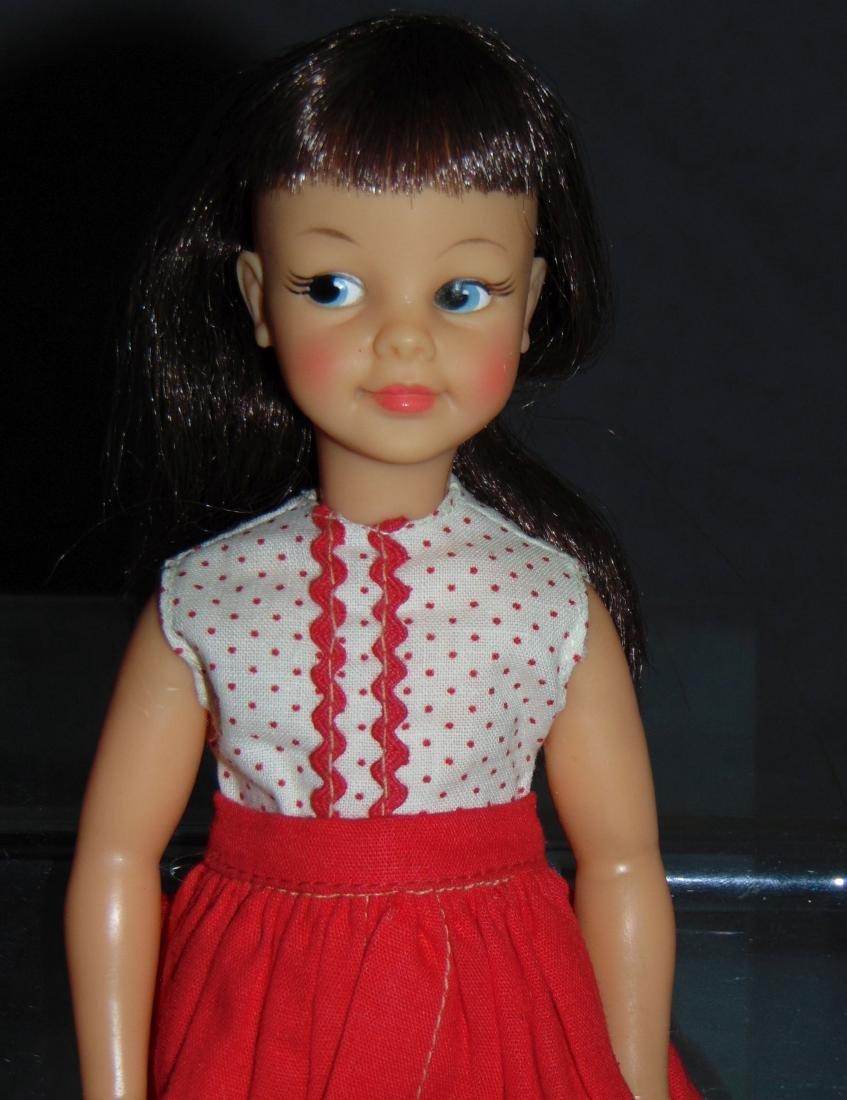 1964 Ideal Patti Doll, Montgomery Ward Exclusive - 2