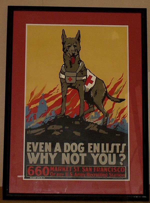 10: ORIGINAL WW1 POSTER EVEN A DOG ENLISTS