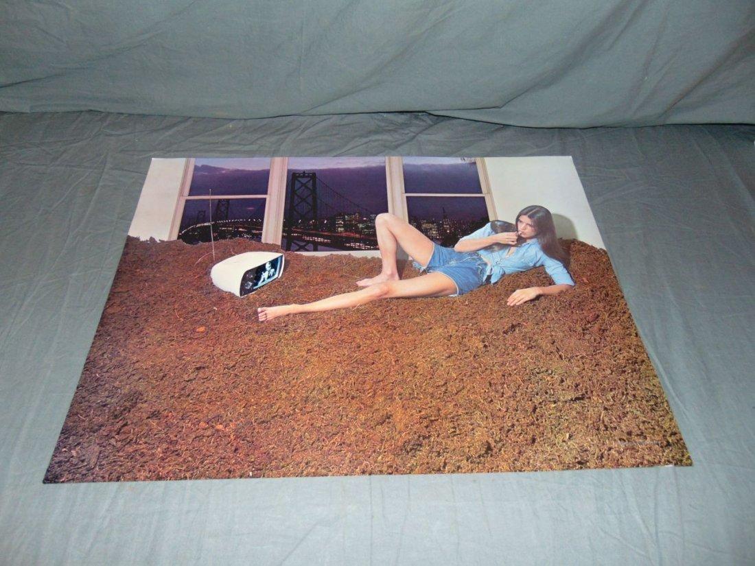 (9) Assorted Psychedelic Marijuana Posters - 6