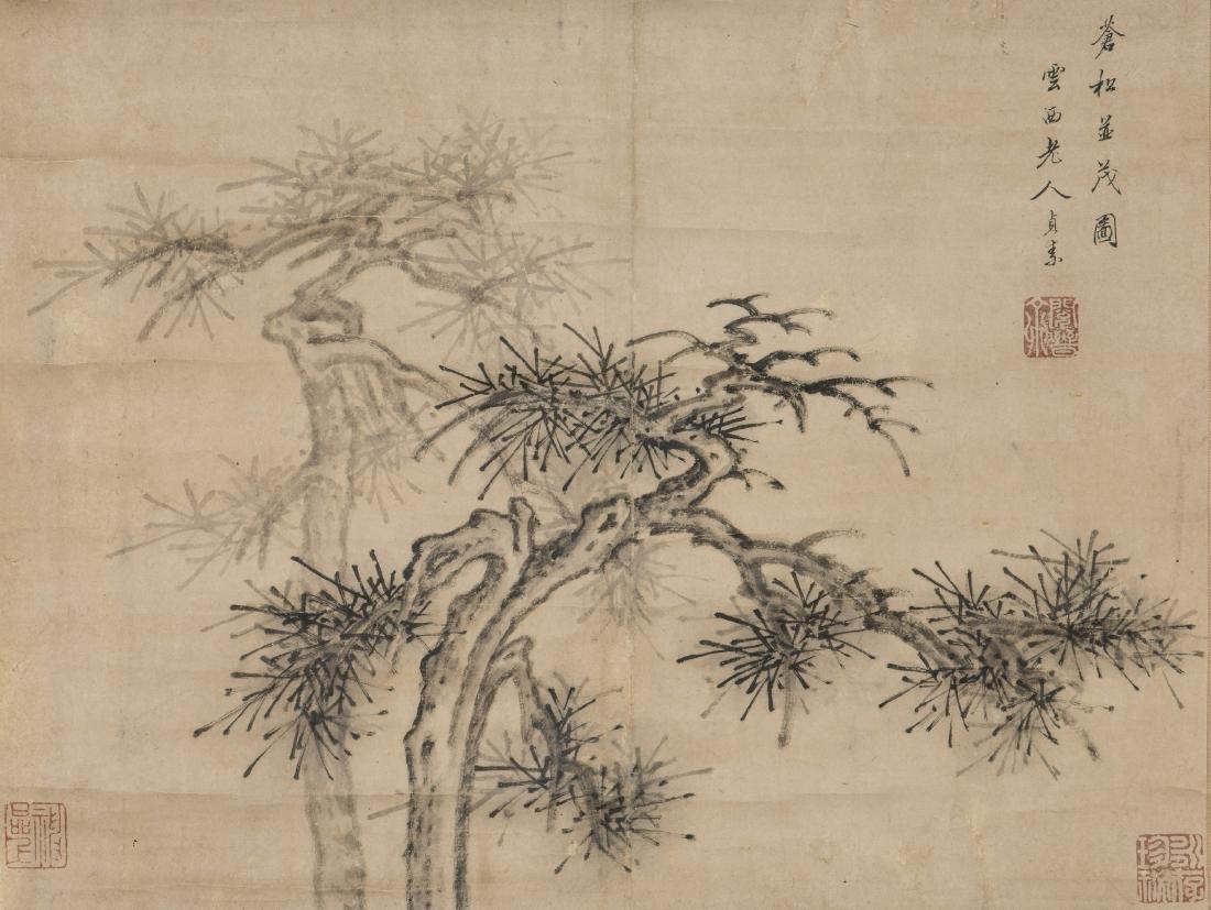 CAO ZHIBAI (ATTRIBUTED TO,1271-1355), PINE