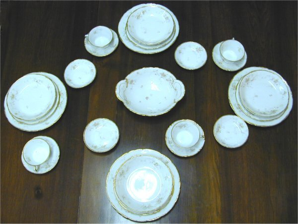 5003: 25 PC PARTIAL SET THEODORE HAVILAND LIMOGES CHINA