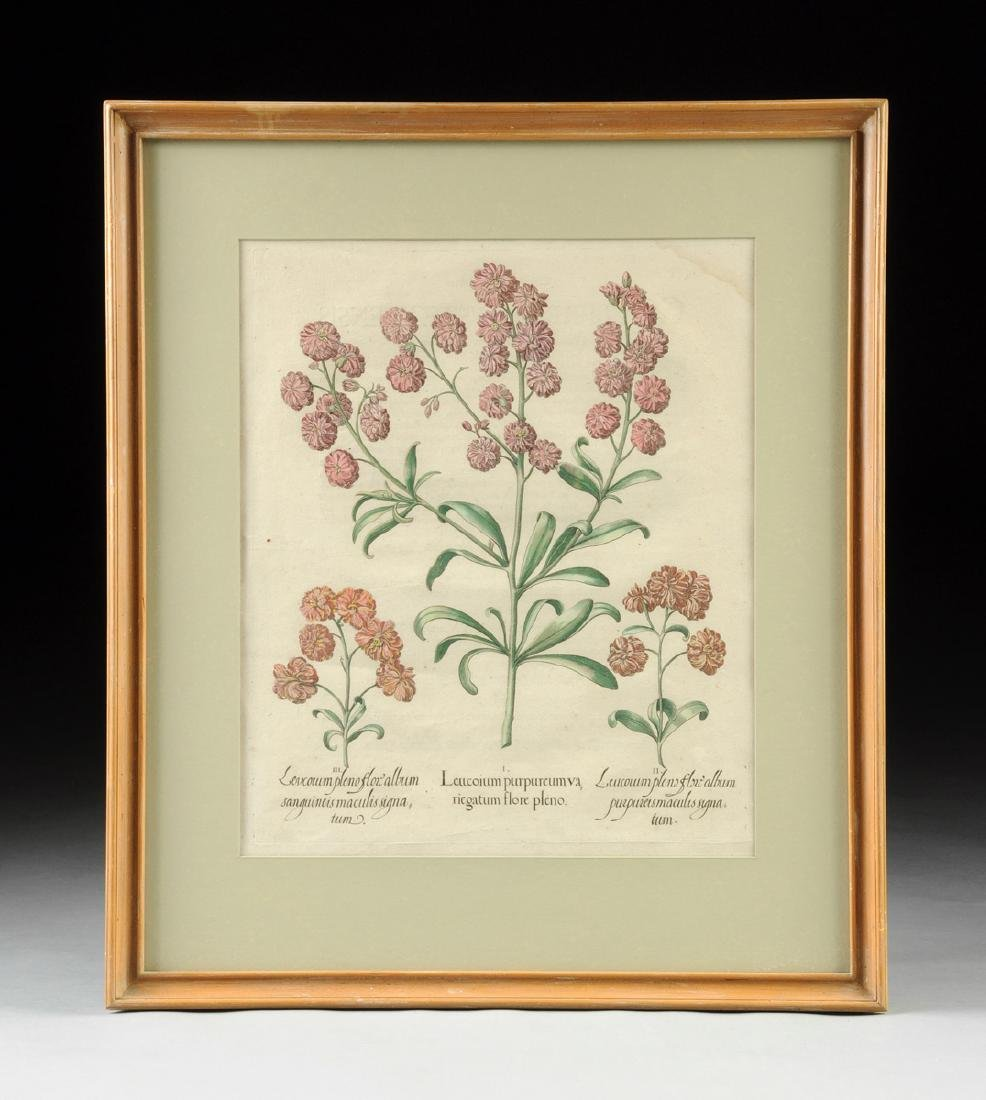 A PAIR OF FRAMED GERMAN HAND COLORED BOTANICAL - 4