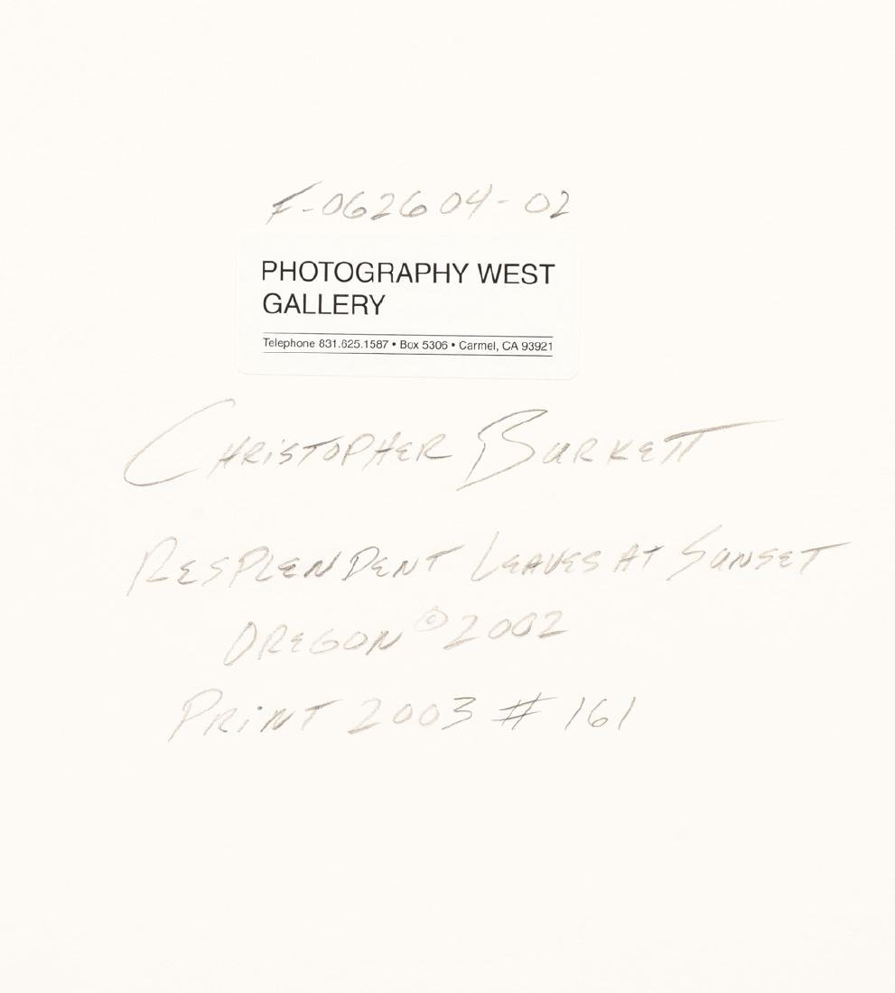 CHRISTOPHER BURKETT (American b. 1951) A PHOTOGRAPH, - 9