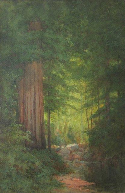 Lorenzo Latimer, (California, 1857-1941), Redwoods