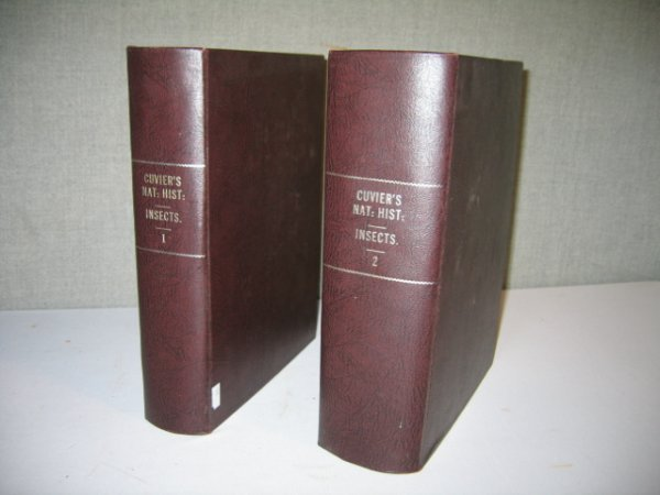 """12: 2 VOLS. 1832 CUVIER'S """"THE CLASS INSECTA"""" ENGRAVED"""
